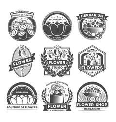 flower studio vintage isolated label set vector image vector image