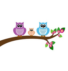 owl family colorful on tree branch vector image