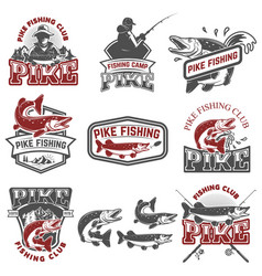 Pike fishing club fishermans icons design vector