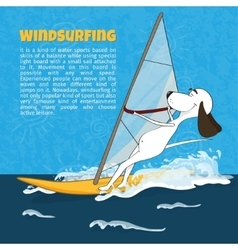 Cartoon happy dog rides windsurfing vector