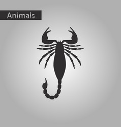 black and white style icon of scorpio vector image