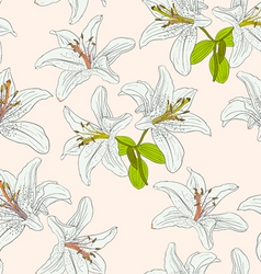 seamless background with flower lily vector image vector image