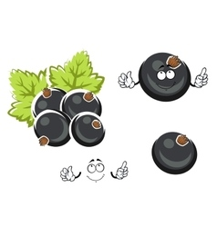 Black currant berry cartoon character vector