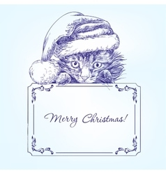 Christmas kitten in santa stocking hat hand drawn vector