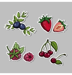 Stickers with berries set vector