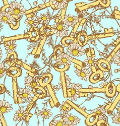 Sketch keys with daisy vector image vector image