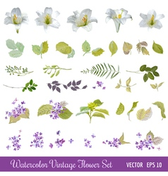 Vintage flower set - watercolor style vector