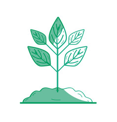 Silhouette plant with ground to save and care vector