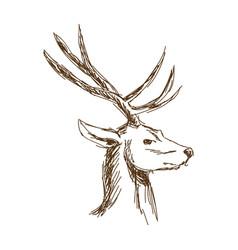 Christmas deer head engraving style vintage vector