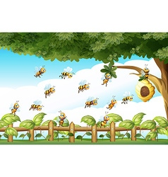 Scene with bees flying around beehive vector