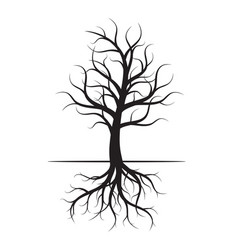 black tree with roots vector image vector image