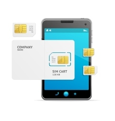 Phone Sim Card Template vector image vector image