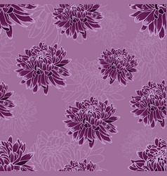 seamless pattern with dark violet chrysanthemums vector image
