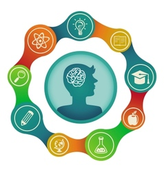 Education concept - brain and creativity vector