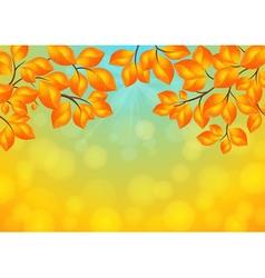 Golden leaves background vector image vector image
