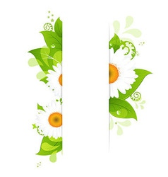 Natural Background With Camomiles vector image vector image