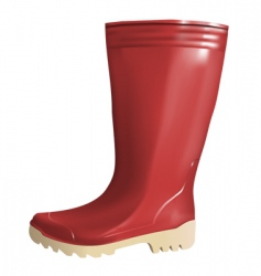 rubber boot vector image vector image