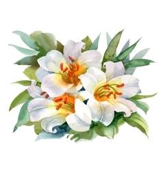 Watercolor summer garden blooming flower on white vector