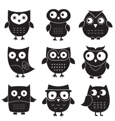 Owls set isolated elements vector