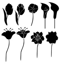 Silhouettes of flowers 3 vector