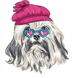 Funny cartoon hipster lowchen dog vector