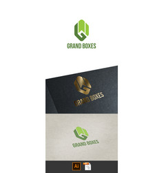 grand boxes vector image
