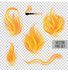 painted transparent fire on a transparent vector image
