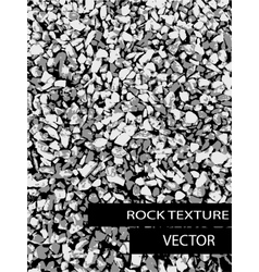 Rock background texture vector image