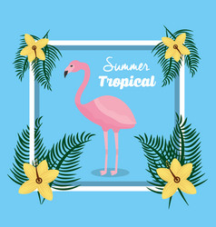 summer tropical flamingo with flowers frame vector image