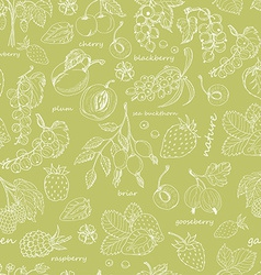 Seamless pattern with berries vector
