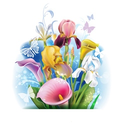 Bouquet of calla lilies and irises vector