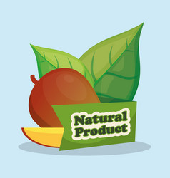 mango slice natural product design vector image
