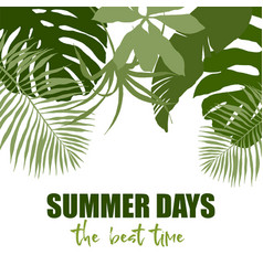 Top border composed of plain green tropical leaves vector