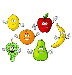 Cartoon tropical and garden fruits characters vector image vector image