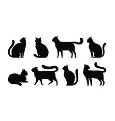 Cat silhouette set icons pets kitty feline vector