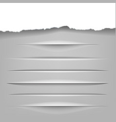 dividers set vector image