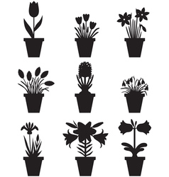 Flower pot black vector
