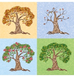 Four seasons tree vector