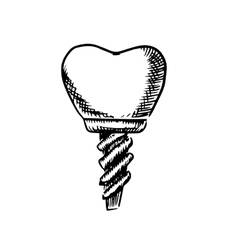 Isolated sketch of a tooth implant vector