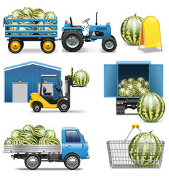 Watermelon shipping icons vector