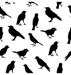 Birds Silhouettes Seamless Pattern Background vector image