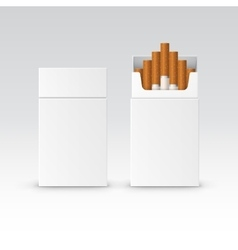 Blank Pack Package Box of Cigarettes vector image