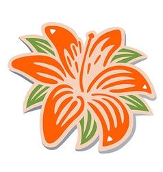 Orange lily vector image vector image