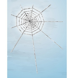 spider web with shadow vector image