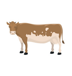 cartoon cow farm animal vector image vector image