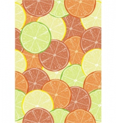 citrus seamless pattern vector image vector image