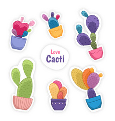Colorful cacti cactus flower potted house plants vector