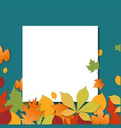 different autumn leaves with blank paper sheet vector image