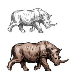 rhinoceros sketch wild animal isolated icon vector image