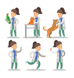 vet woman cartoon character set pets health care vector image vector image